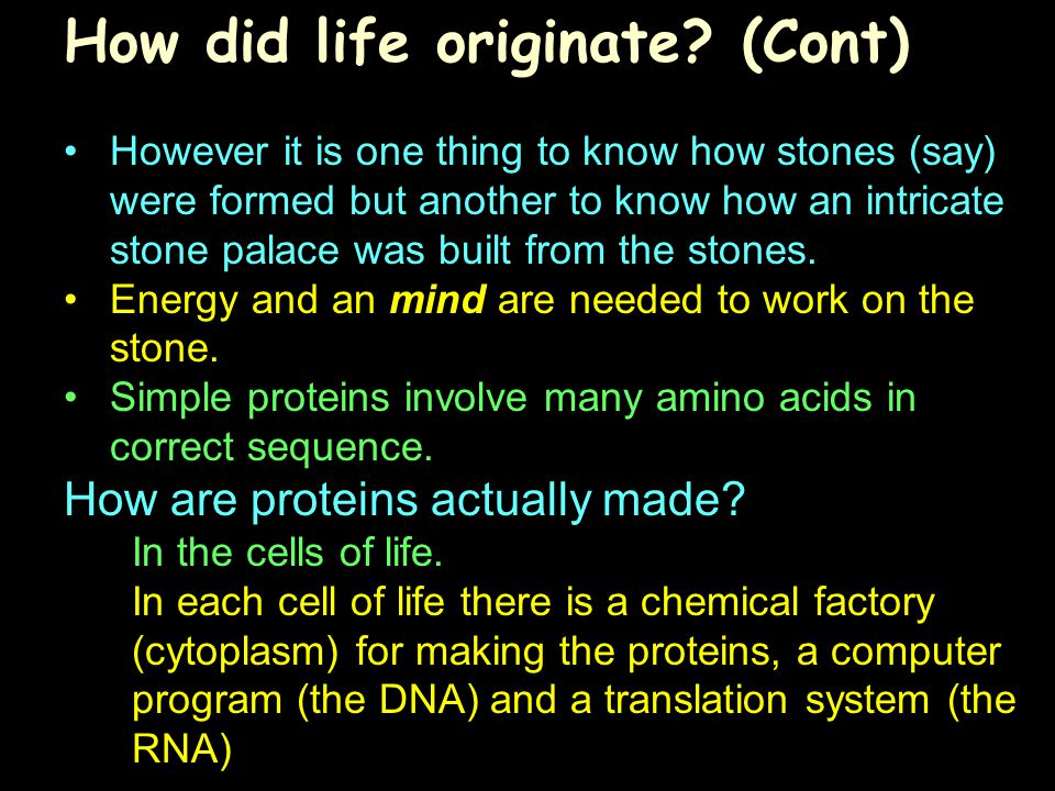 How did life originate? (Cont) However it is one thing to know how stones (say) were formed but another to know how an intricate stone palace was buil