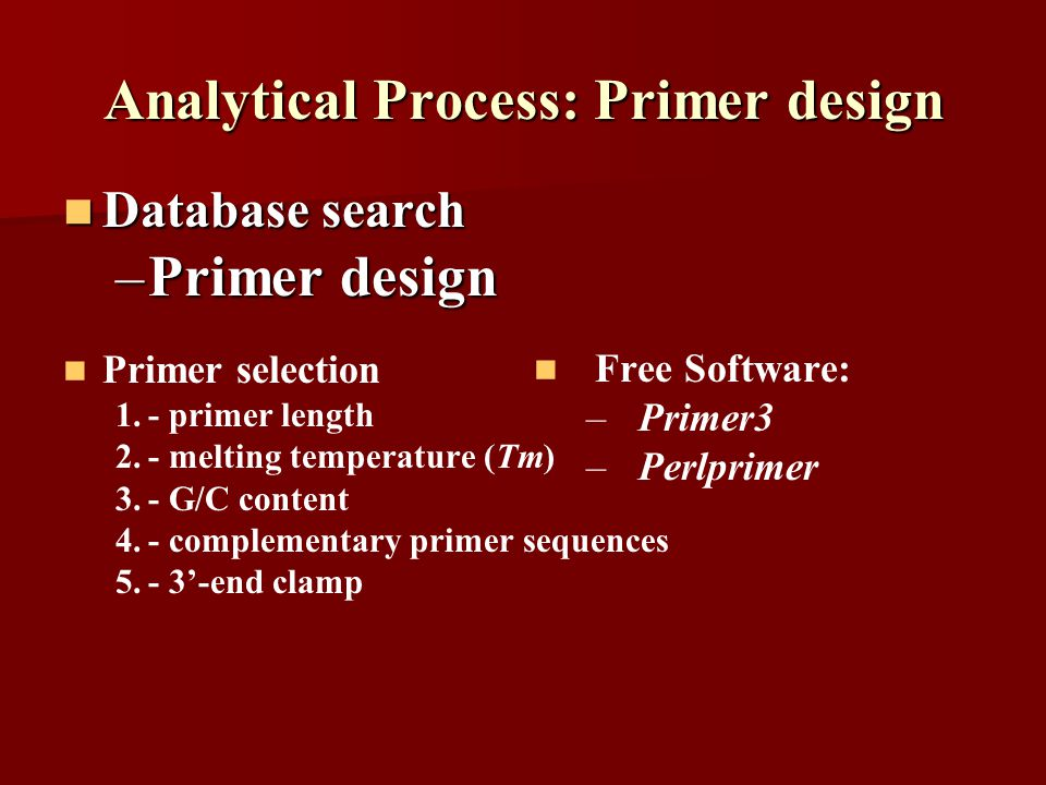 Analytical Process: Primer design Database search Database search –Primer design Primer selection 1.