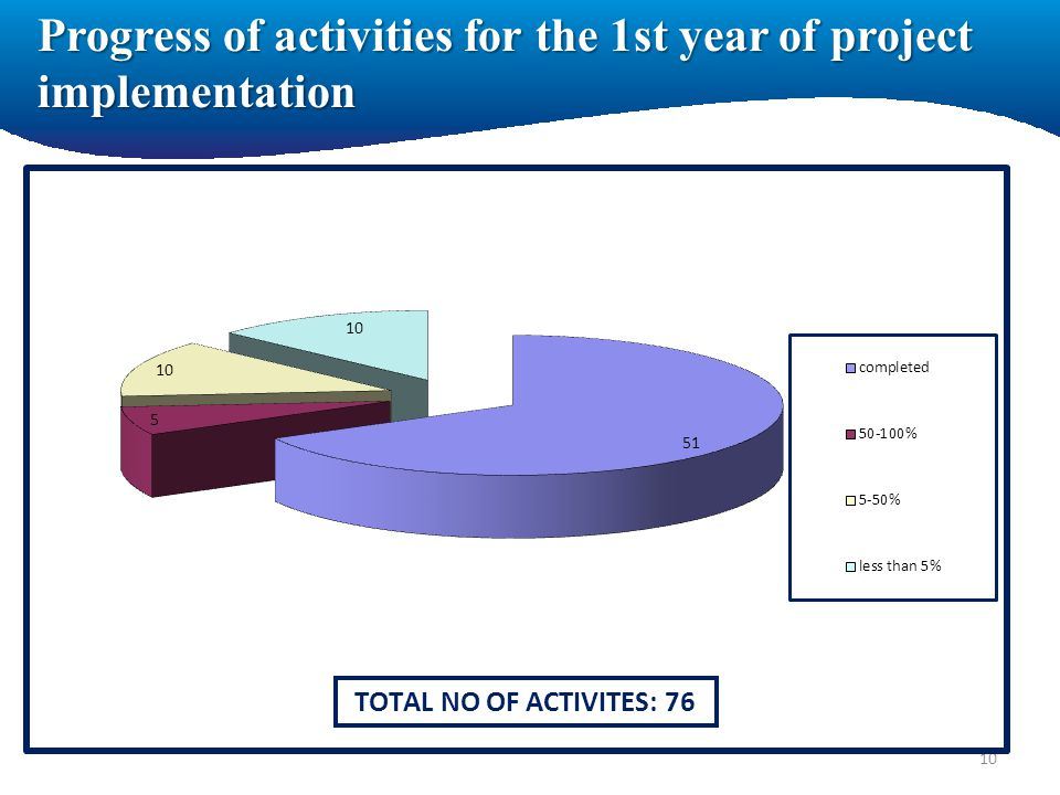 Progress of activities for the 1st year of project implementation 10