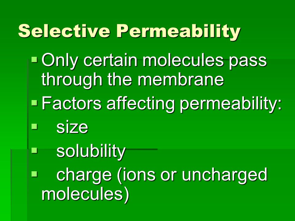 Selective Permeability  Only certain molecules pass through the membrane  Factors affecting permeability:  size  solubility  charge (ions or uncharged molecules)