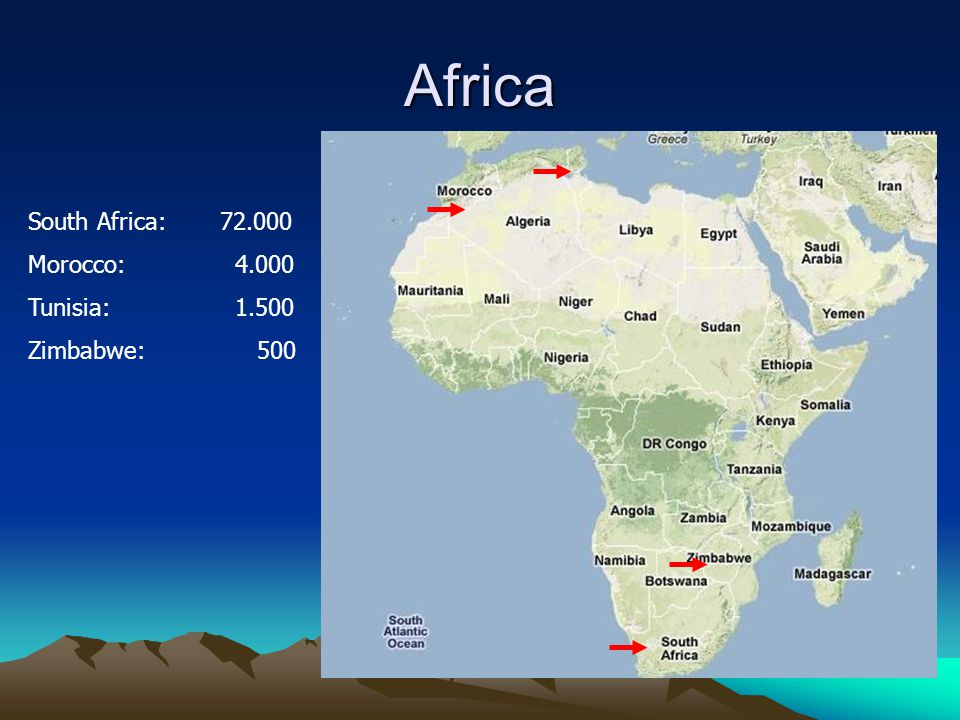Africa South Africa: 72.000 Morocco: 4.000 Tunisia: 1.500 Zimbabwe: 500