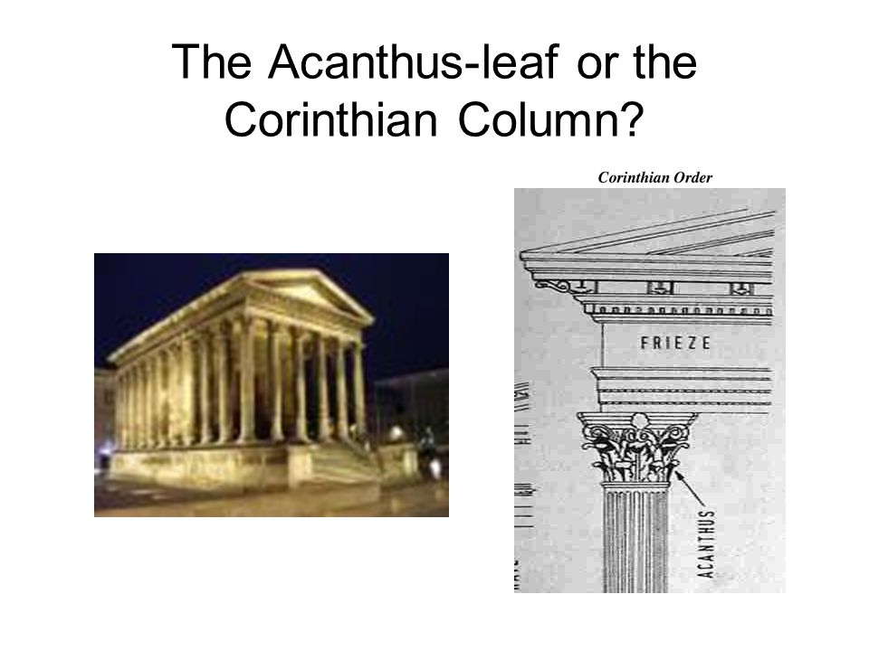 The Acanthus-leaf or the Corinthian Column