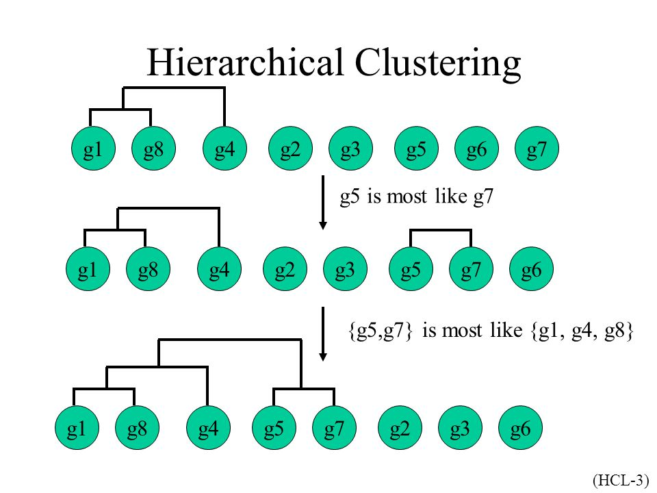 g7g1g8g4g2g3g5g6 g1g8g4g2g3g5g7 g6g1g8g4g5g7g2g3 Hierarchical Clustering g5 is most like g7 {g5,g7} is most like {g1, g4, g8} (HCL-3)