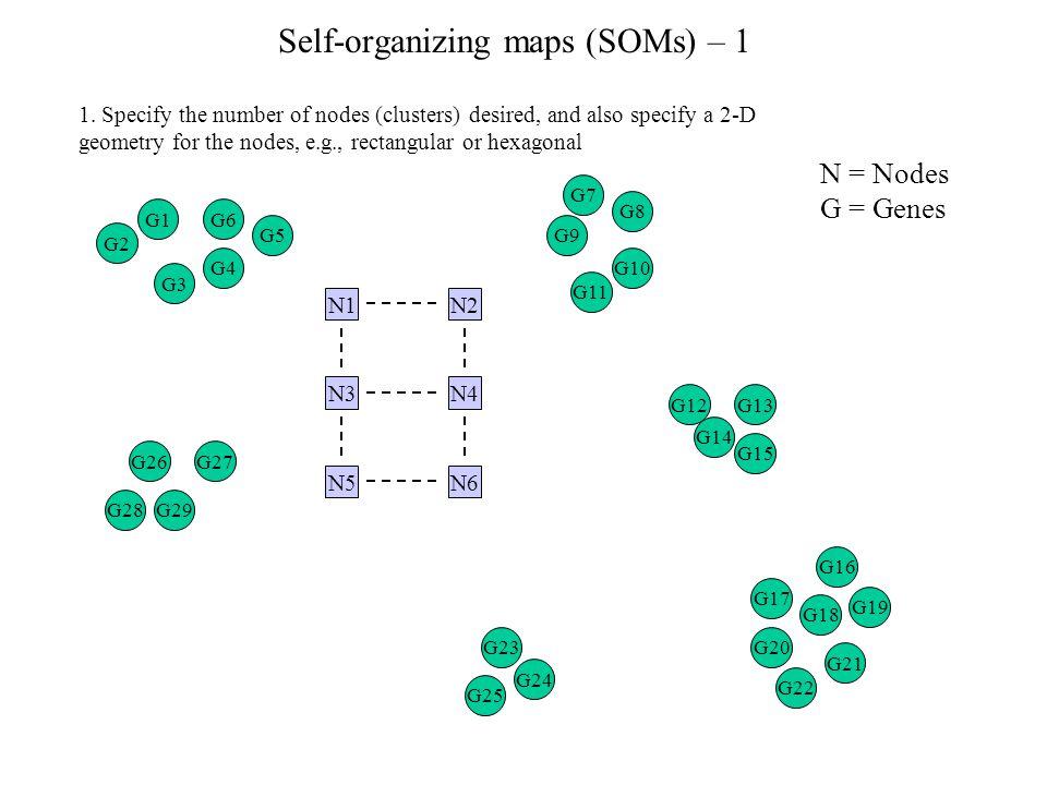 Self-organizing maps (SOMs) – 1 1.