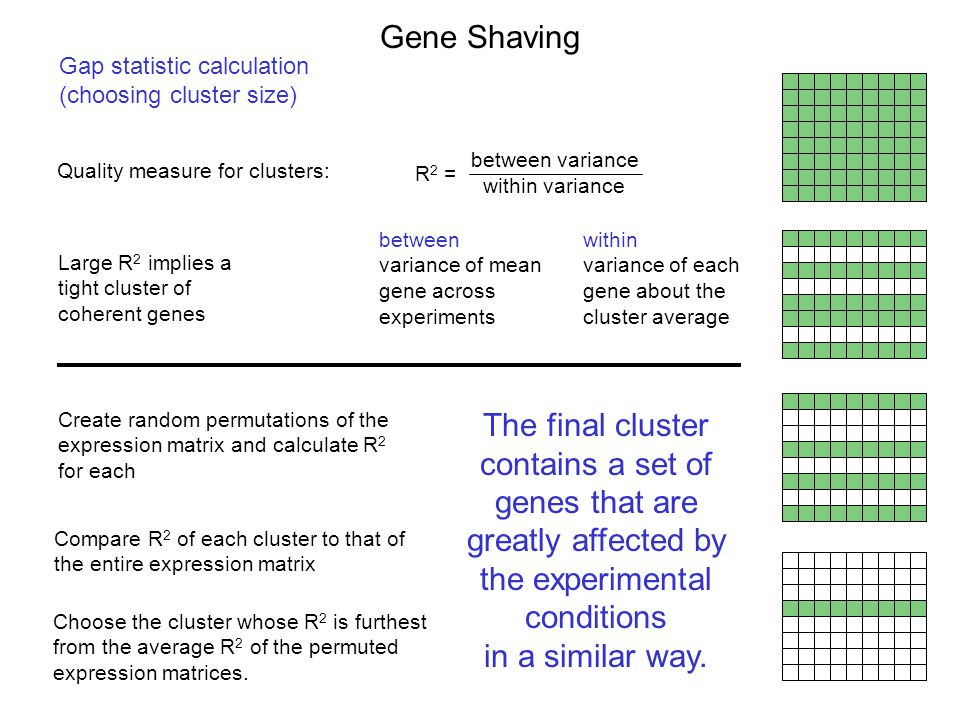 Gap statistic calculation (choosing cluster size) Quality measure for clusters: Create random permutations of the expression matrix and calculate R 2 for each Large R 2 implies a tight cluster of coherent genes within variance between variance R 2 = Compare R 2 of each cluster to that of the entire expression matrix Choose the cluster whose R 2 is furthest from the average R 2 of the permuted expression matrices.