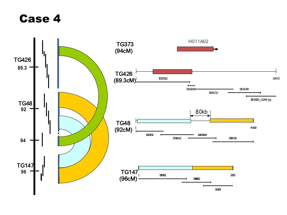 89.3 92 94 96 TG426 TG48 TG147 TG426 (89.3cM) TG48 (92cM) TG147 (96cM) H011A02 TG373 (94cM) Case 4 80kb