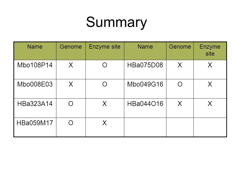 Summary NameGenomeEnzyme siteNameGenomeEnzyme site Mbo108P14XOHBa075D08XX Mbo008E03XOMbo049G16OX HBa323A14OXHBa044O16XX HBa059M17OX