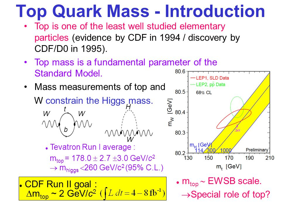 Top Quark Mass - Introduction Top is one of the least well studied elementary particles (evidence by CDF in 1994 / discovery by CDF/D0 in 1995).