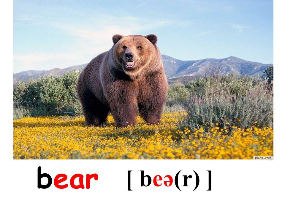bear [ beə(r) ]