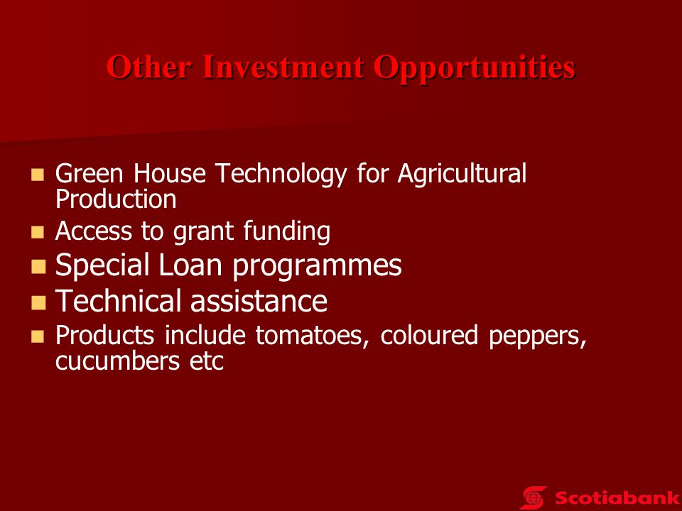 Other Investment Opportunities Exotic products (herbs ) More contained approach – mitigates praedial larceny Higher start-up costs ( short run economies of scale) Strong local demand from hotels Access to export markets Agri – Processing ( Trelawny Yam/Breadfruit)