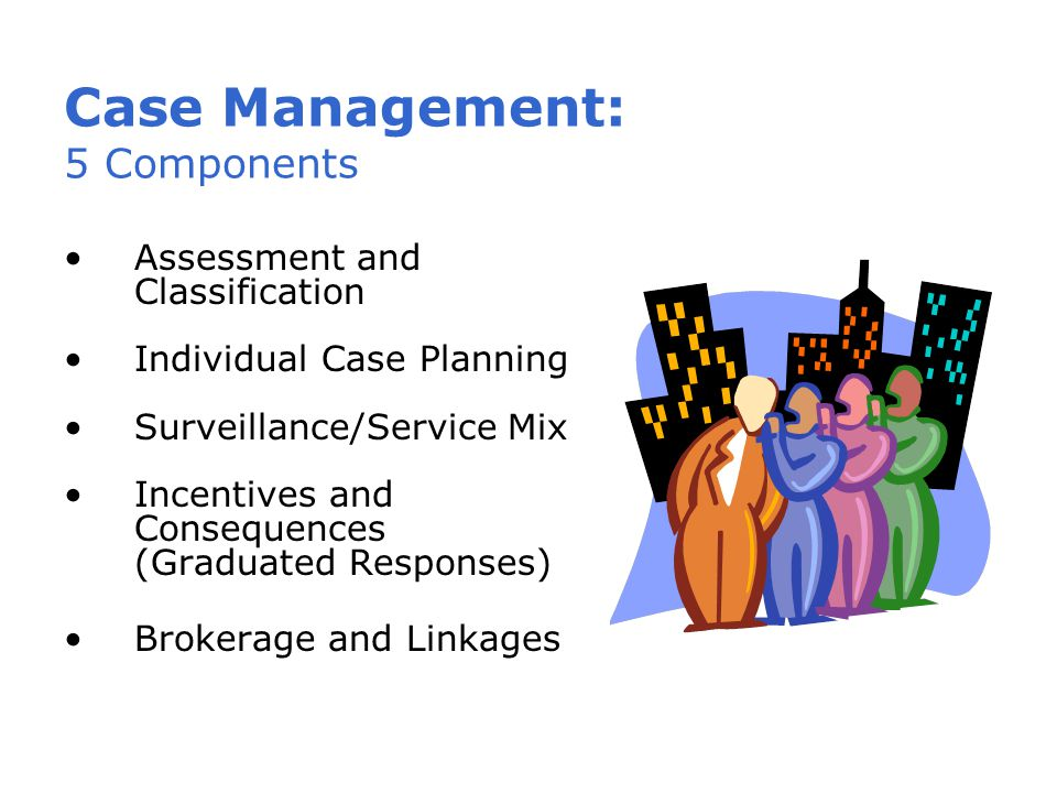 Case Management: 5 Components Assessment and Classification Individual Case Planning Surveillance/Service Mix Incentives and Consequences (Graduated Responses) Brokerage and Linkages