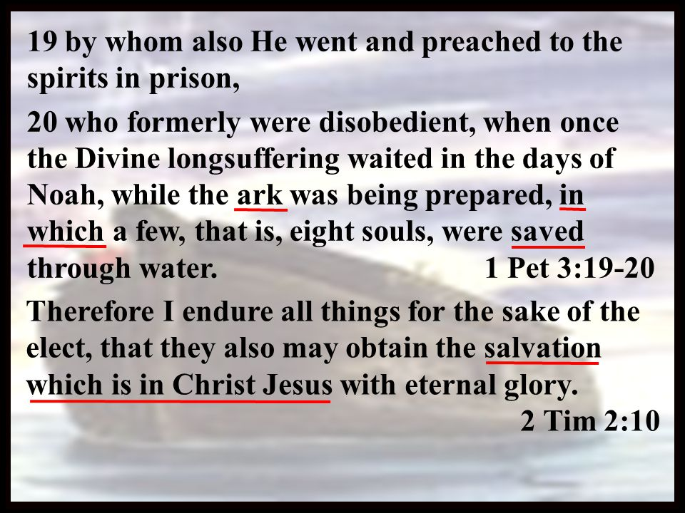 Boundary of Salvation In Christ  This is the 'stone which was rejected by you builders, which has become the chief cornerstone.' 12 Nor is there salvation in any other, for there is no other name under heaven given among men by which we must be saved.