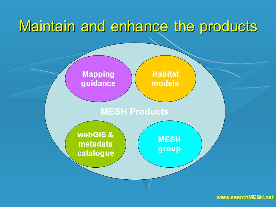 www.searchMESH.net Maintain and enhance the products MESH Products Mapping guidance Habitat models webGIS & metadata catalogue MESH group
