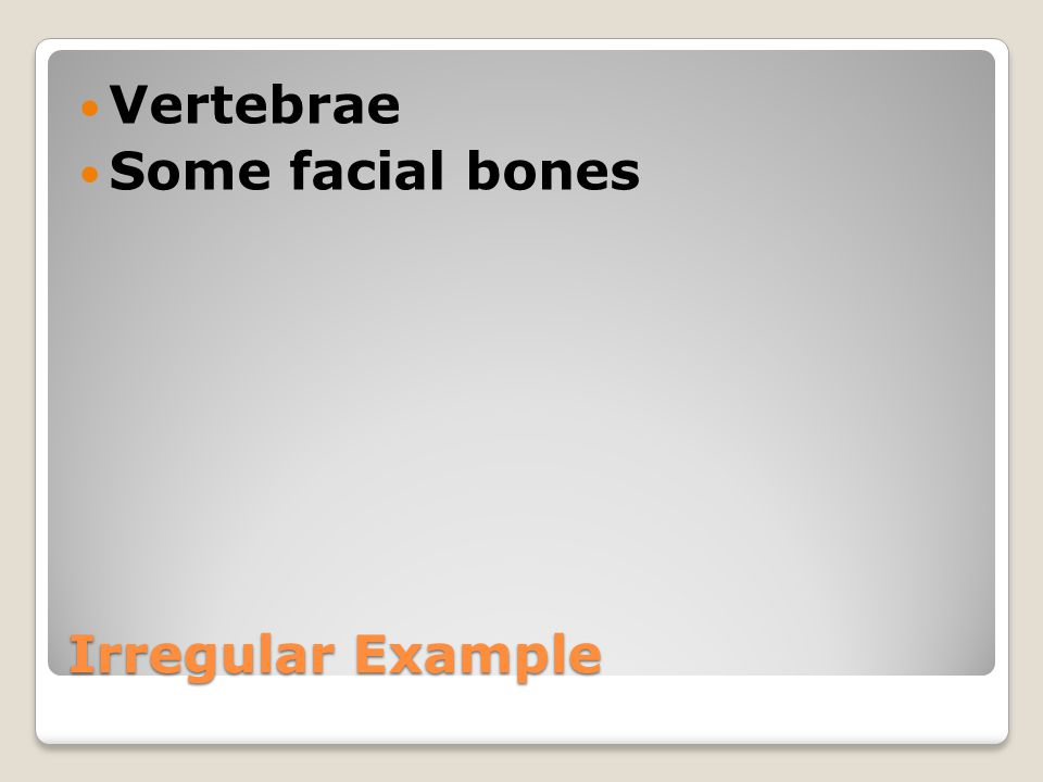 Irregular Example Vertebrae Some facial bones