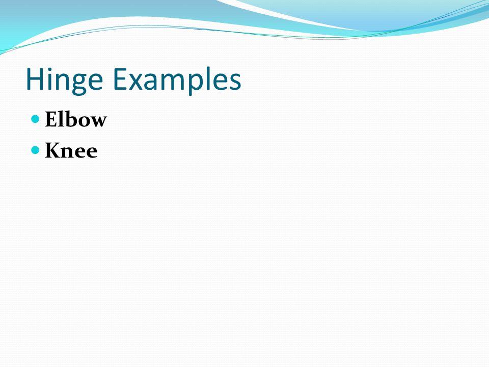 Hinge Examples Elbow Knee
