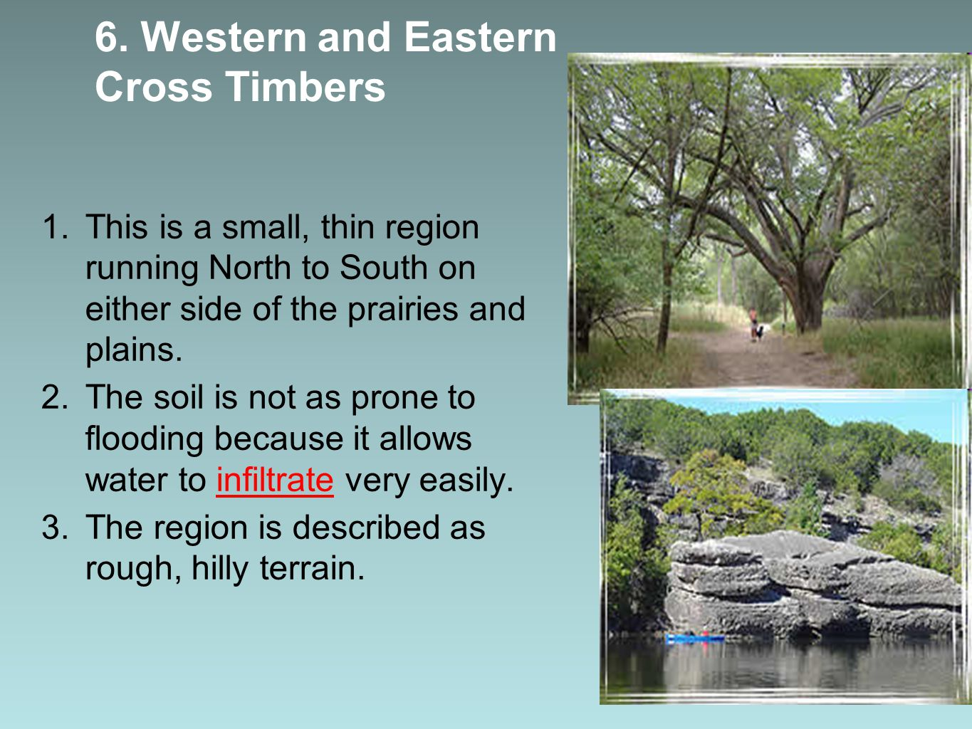 6. Western and Eastern Cross Timbers 1.This is a small, thin region running North to South on either side of the prairies and plains. 2.The soil is no