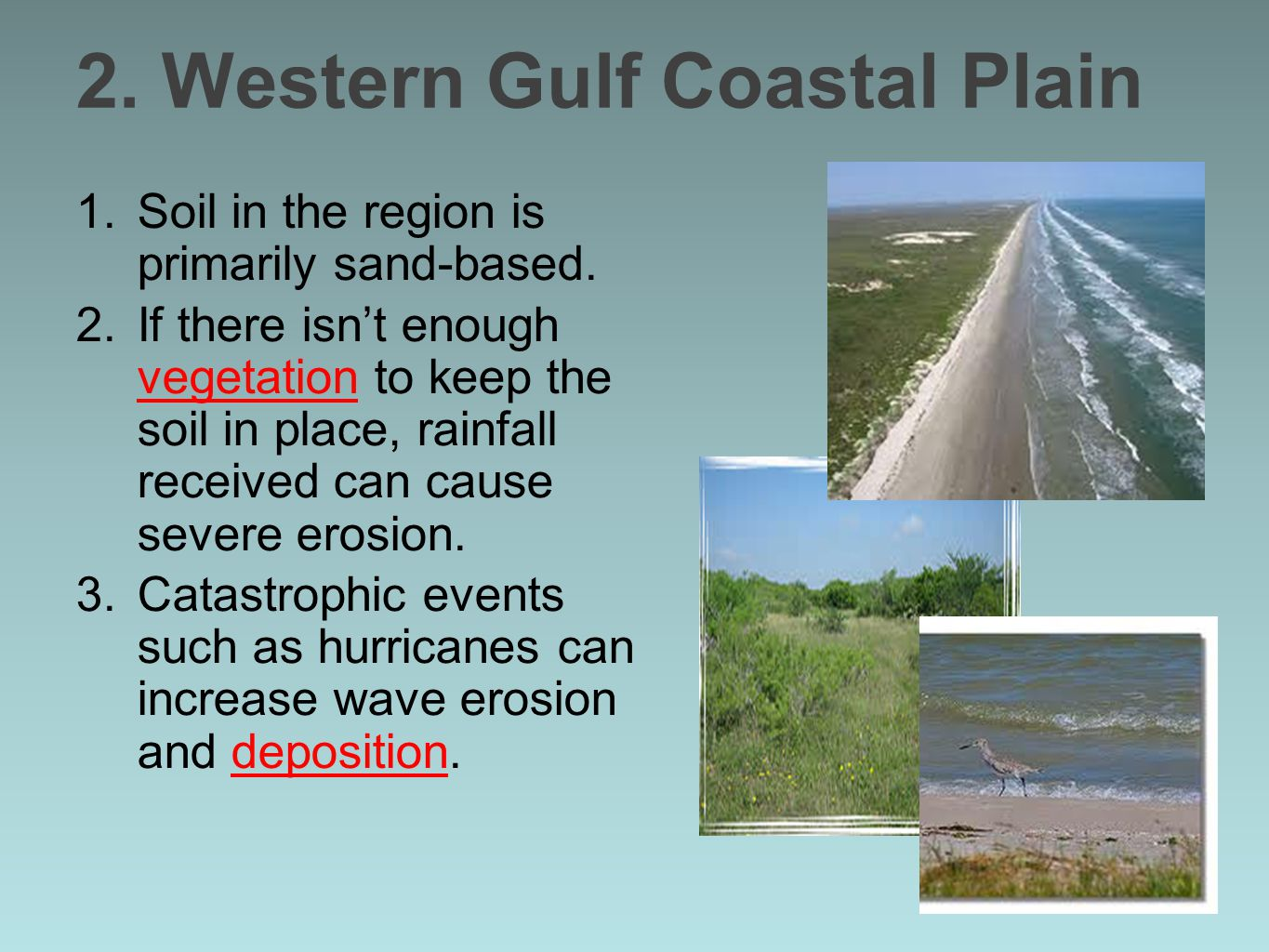 2. Western Gulf Coastal Plain 1.Soil in the region is primarily sand-based. 2.If there isn't enough vegetation to keep the soil in place, rainfall rec