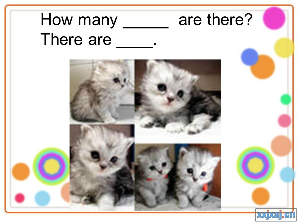 How many _____ are there There are ____.