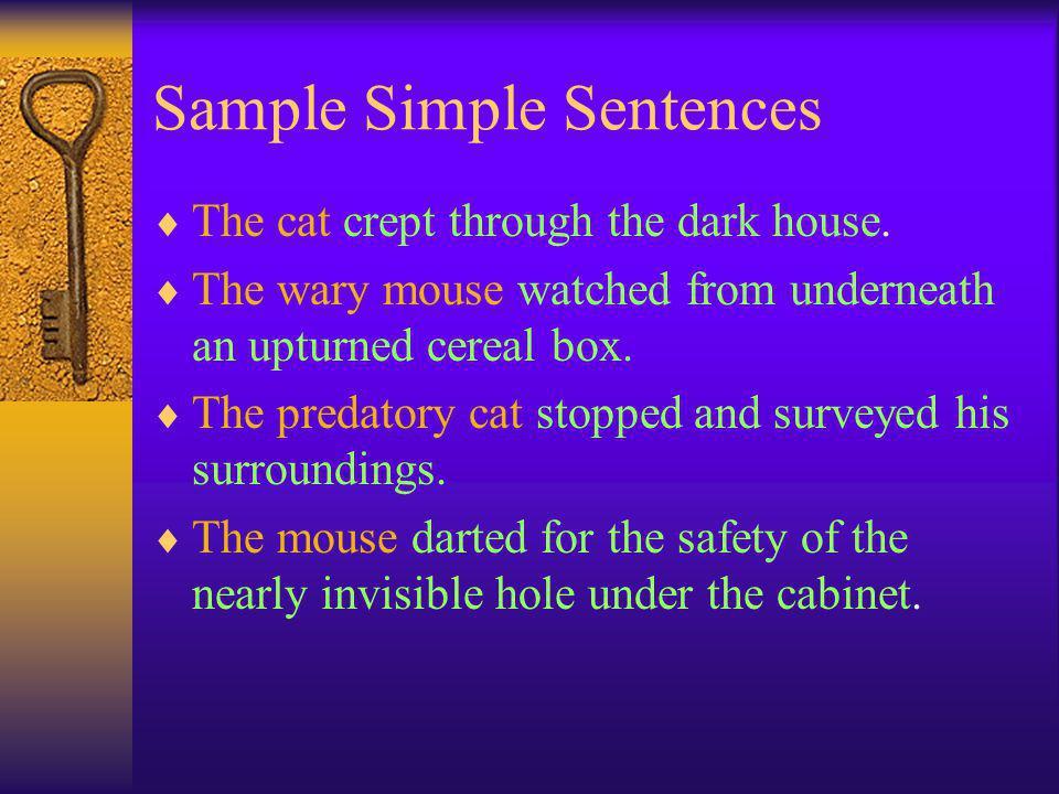 Sample Simple Sentences  The cat crept through the dark house.