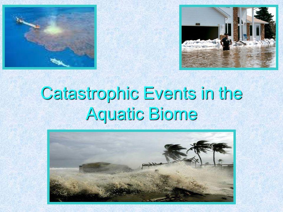 Catastrophic Events in the Aquatic Biome