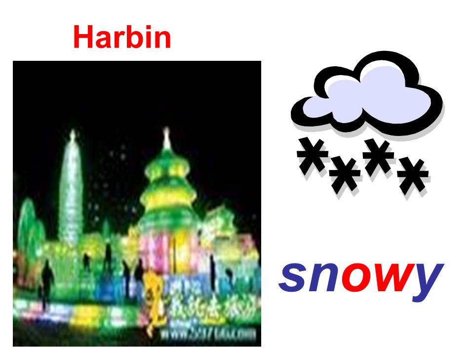 snowy Harbin
