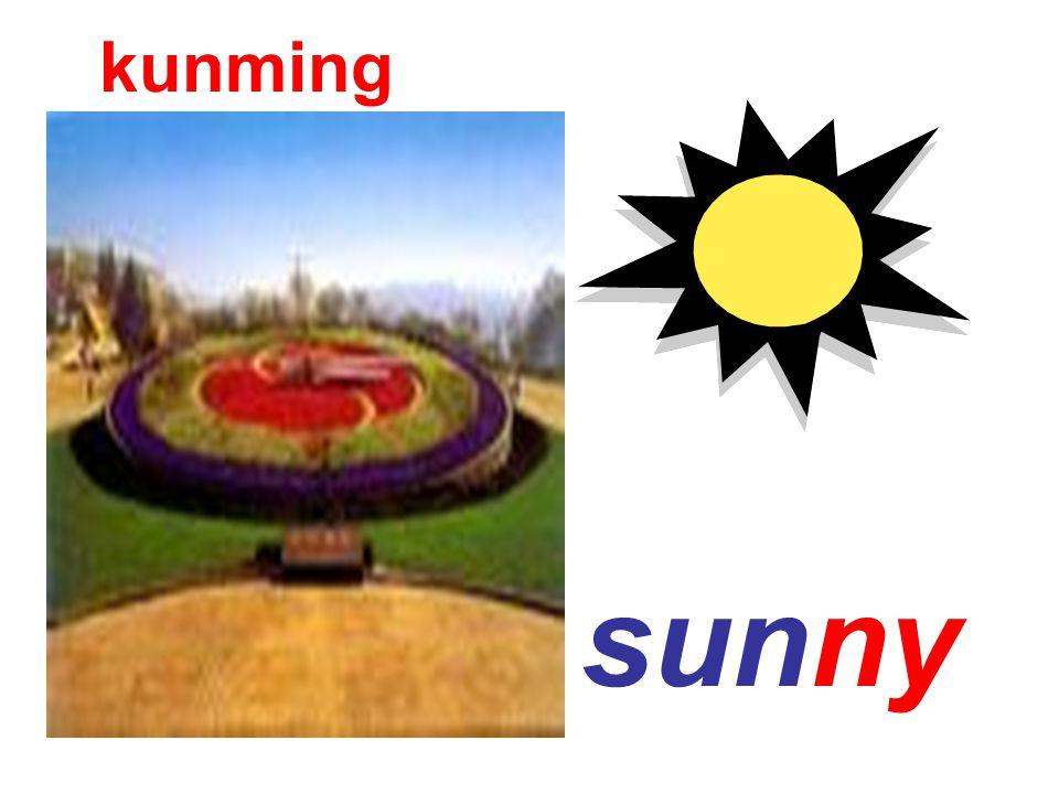 sunny kunming