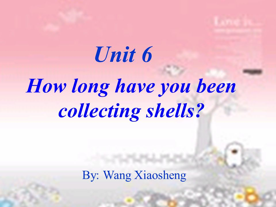 By: Wang Xiaosheng How long have you been collecting shells? Unit 6