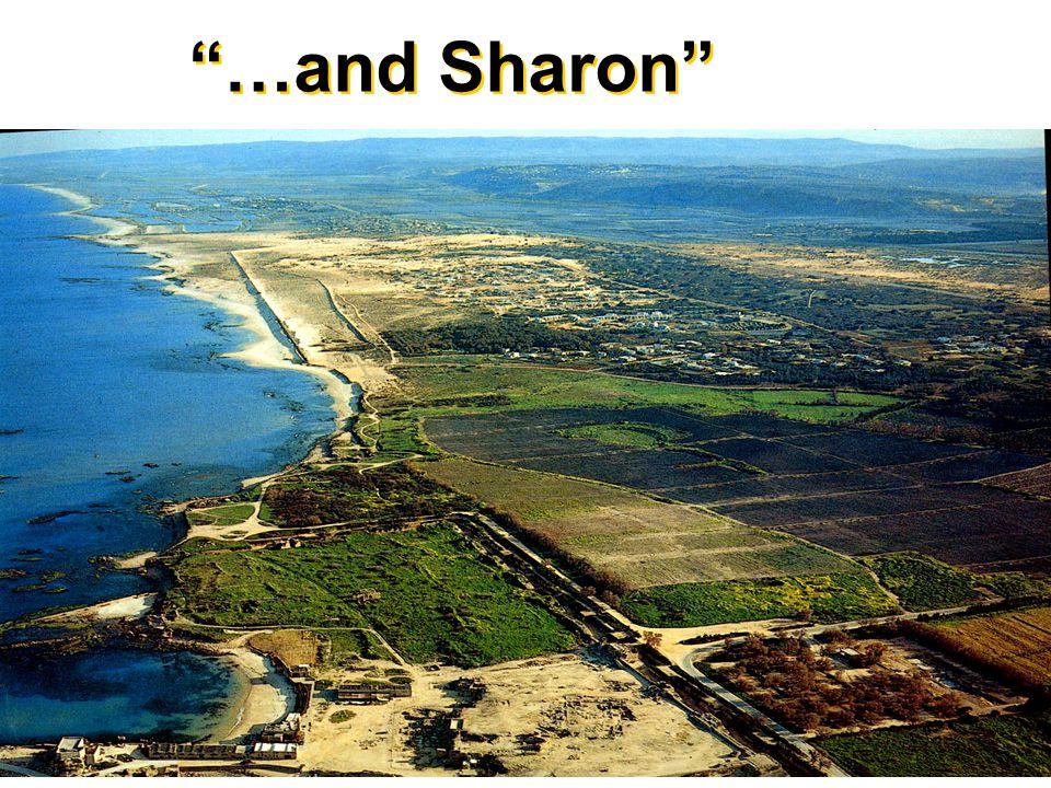 …and Sharon