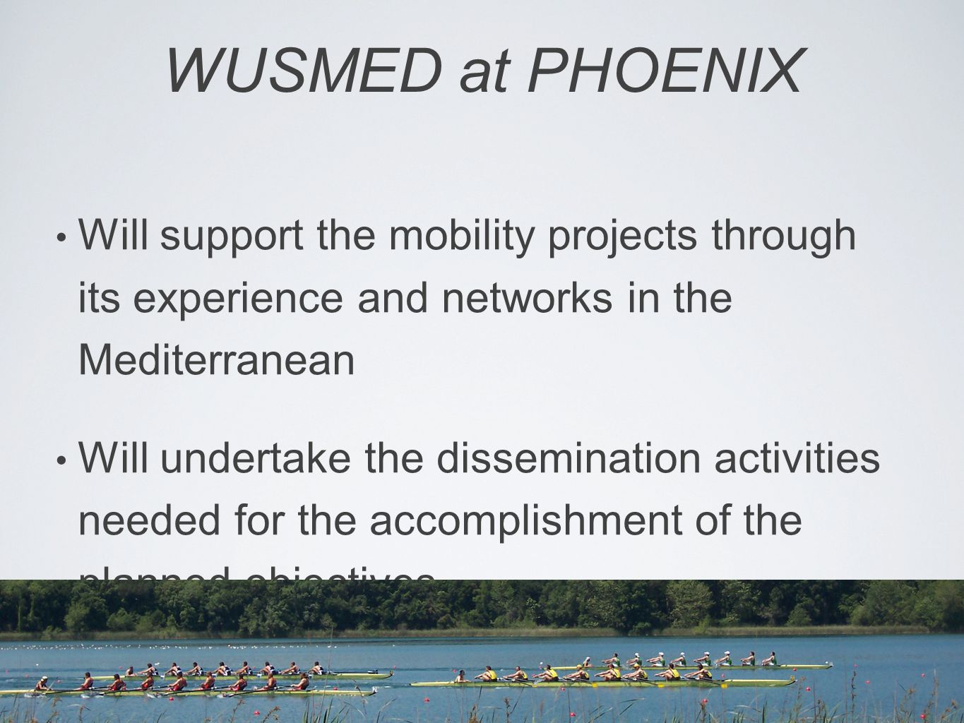 WUSMED at PHOENIX Will support the mobility projects through its experience and networks in the Mediterranean Will undertake the dissemination activities needed for the accomplishment of the planned objectives.
