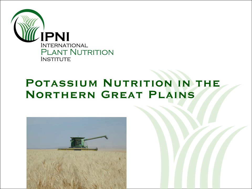 Potassium Nutrition in the Northern Great Plains