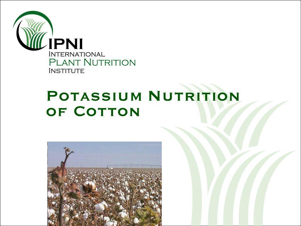 Potassium Nutrition of Cotton