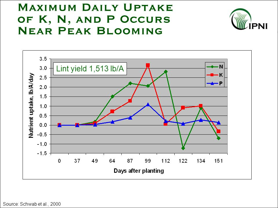 Maximum Daily Uptake of K, N, and P Occurs Near Peak Blooming Source: Schwab et al., 2000 Lint yield 1,513 lb/A