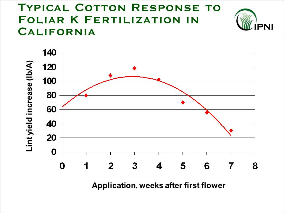 Typical Cotton Response to Foliar K Fertilization in California Lint yield increase (lb/A) Application, weeks after first flower