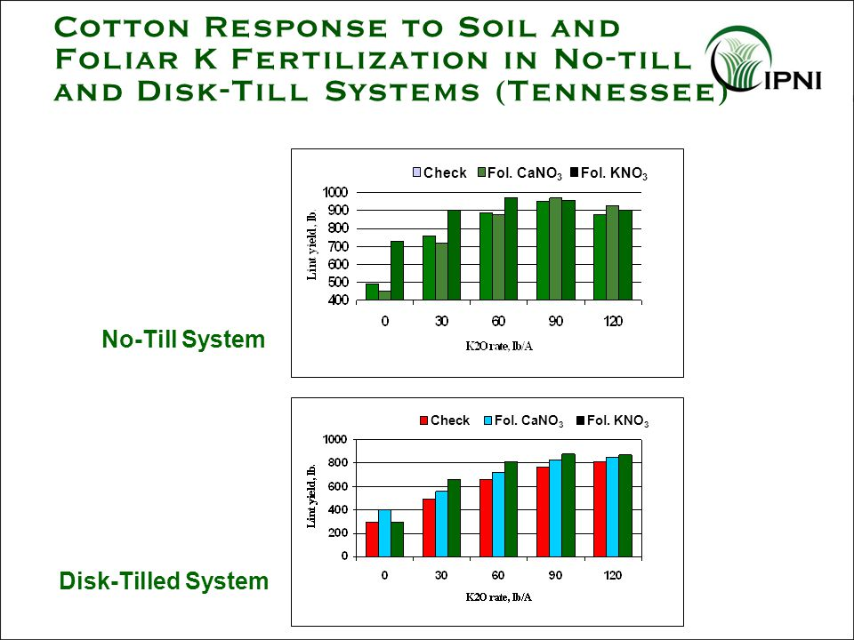 Cotton Response to Soil and Foliar K Fertilization in No-till and Disk-Till Systems (Tennessee) No-Till System CheckFol.
