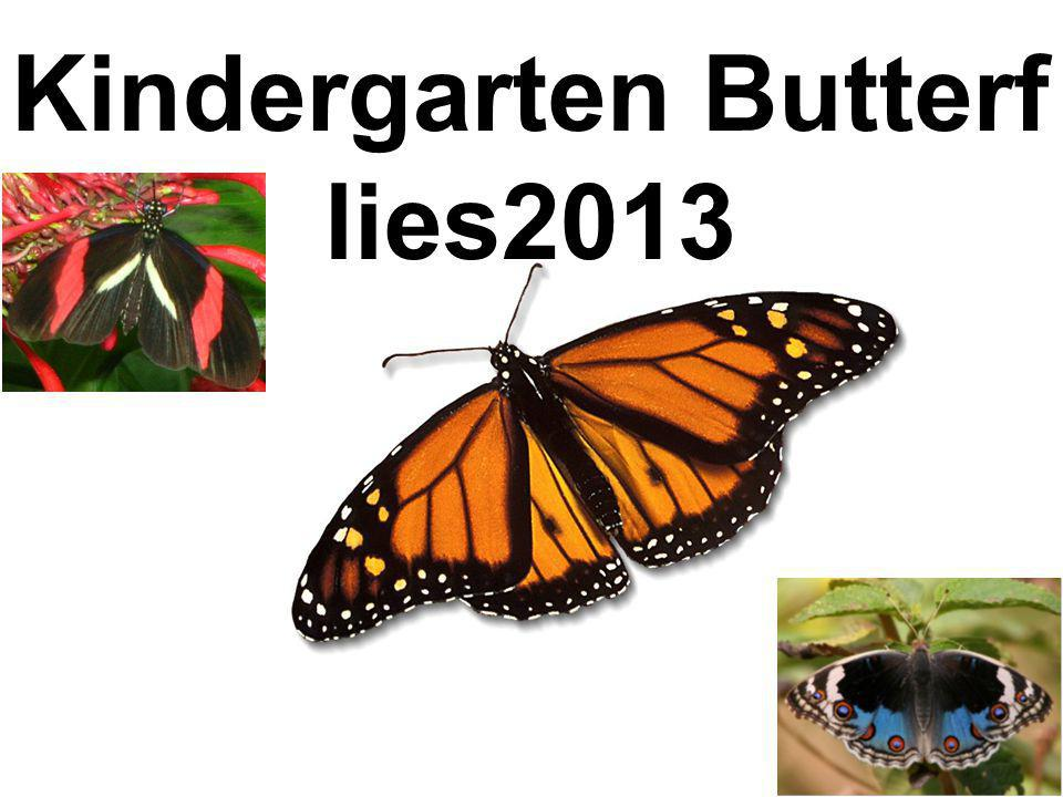 Kindergarten Butterf lies2013