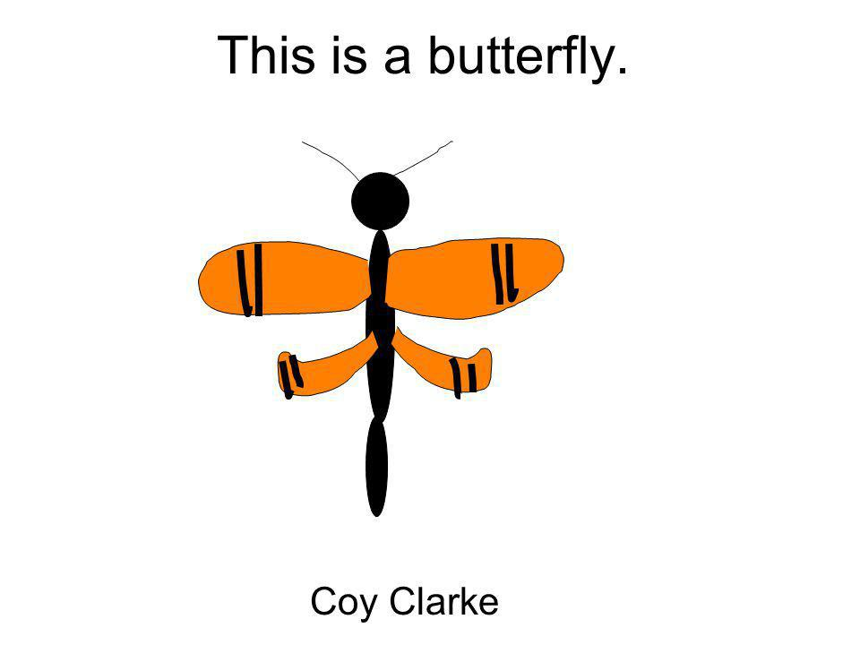This is a butterfly. Coy Clarke
