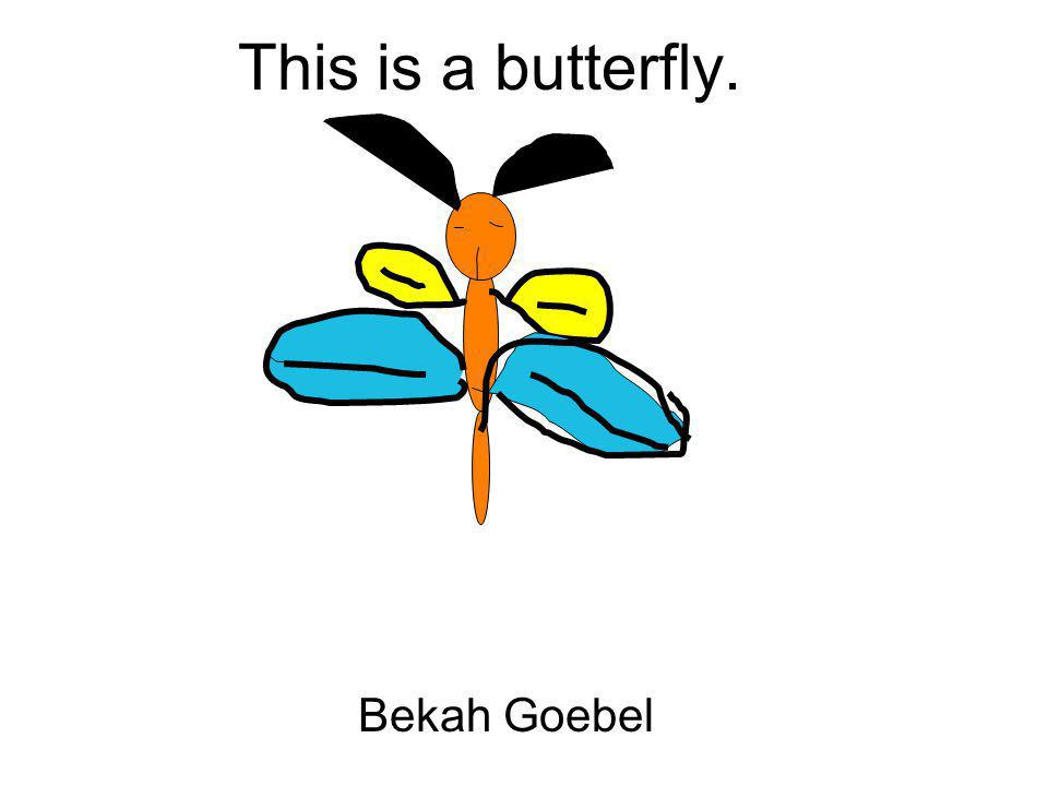 This is a butterfly. Bekah Goebel