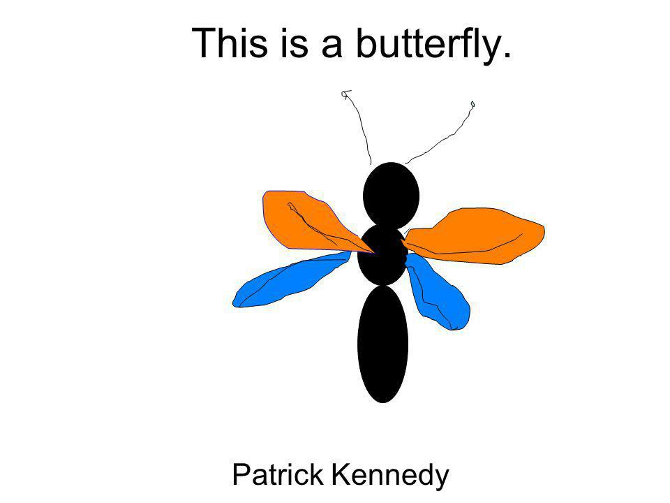 This is a butterfly. Patrick Kennedy