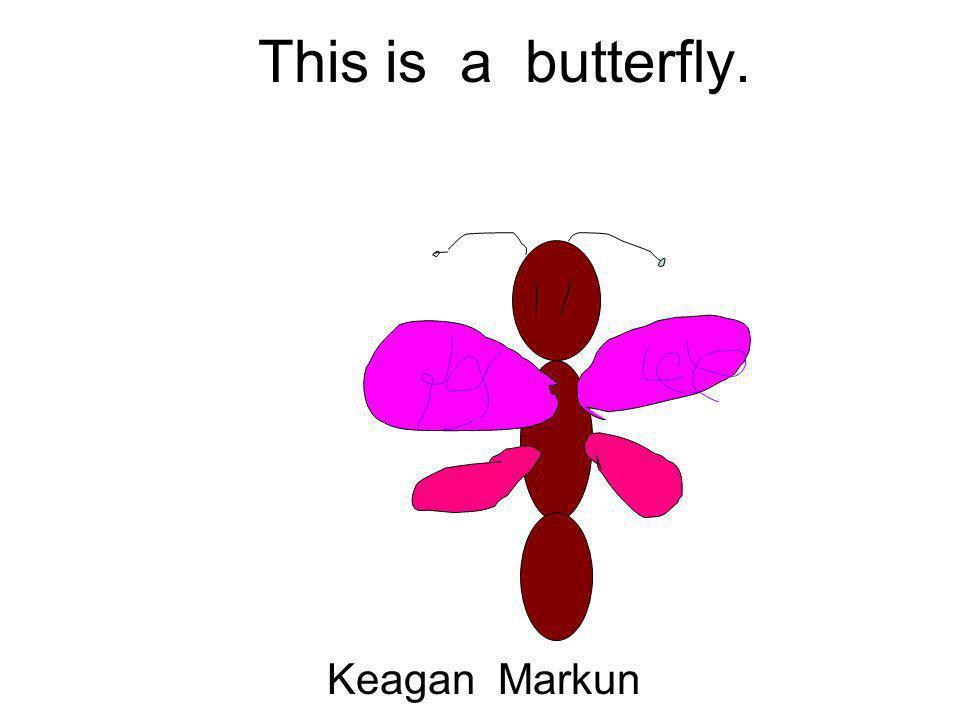 This is a butterfly. Keagan Markun