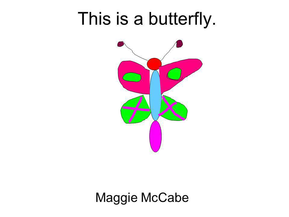 This is a butterfly. Maggie McCabe