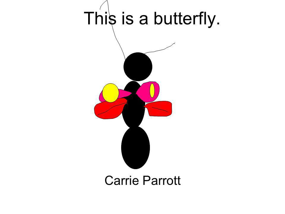 This is a butterfly. Carrie Parrott