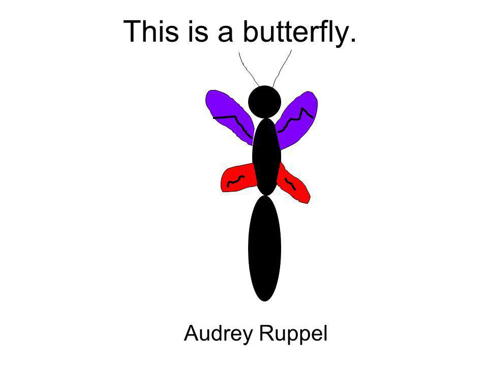 This is a butterfly. Audrey Ruppel