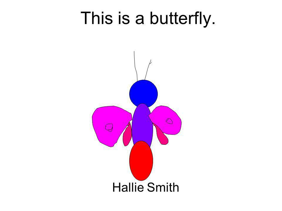 This is a butterfly. Hallie Smith