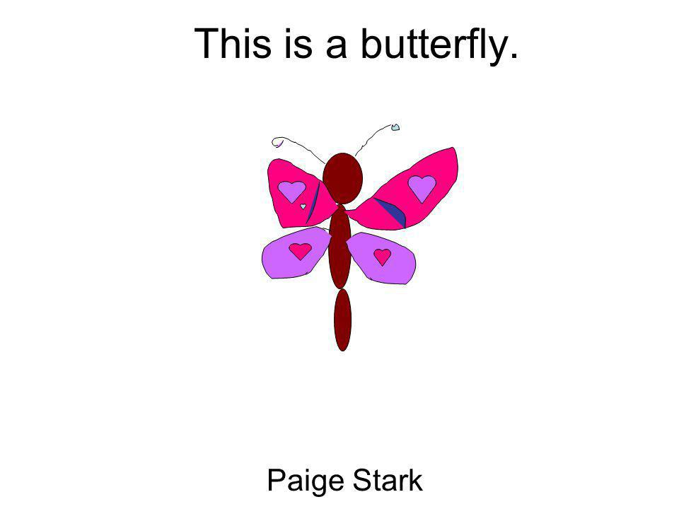 This is a butterfly. Paige Stark