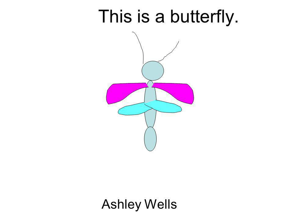 This is a butterfly. Ashley Wells