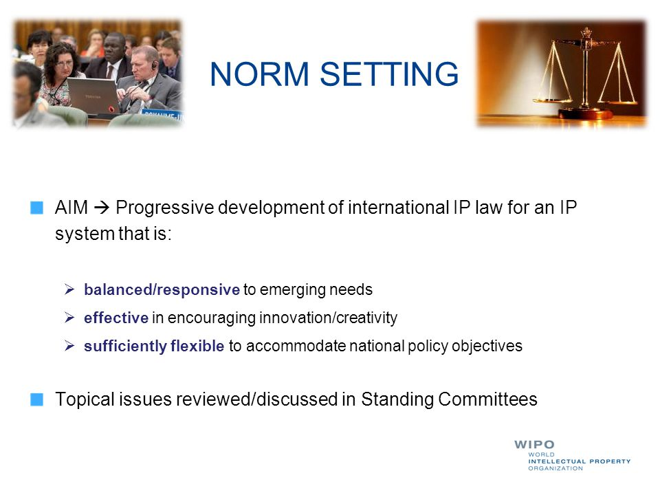 AIM  Progressive development of international IP law for an IP system that is:  balanced/responsive to emerging needs  effective in encouraging inn