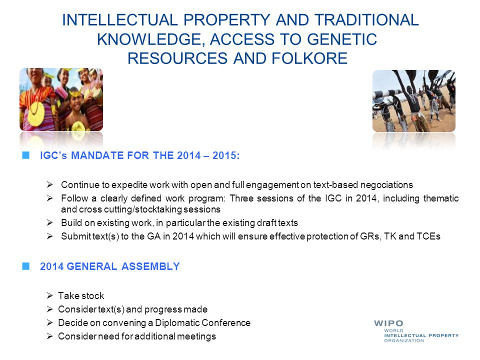 INTELLECTUAL PROPERTY AND TRADITIONAL KNOWLEDGE, ACCESS TO GENETIC RESOURCES AND FOLKORE IGC's MANDATE FOR THE 2014 – 2015:  Continue to expedite wor
