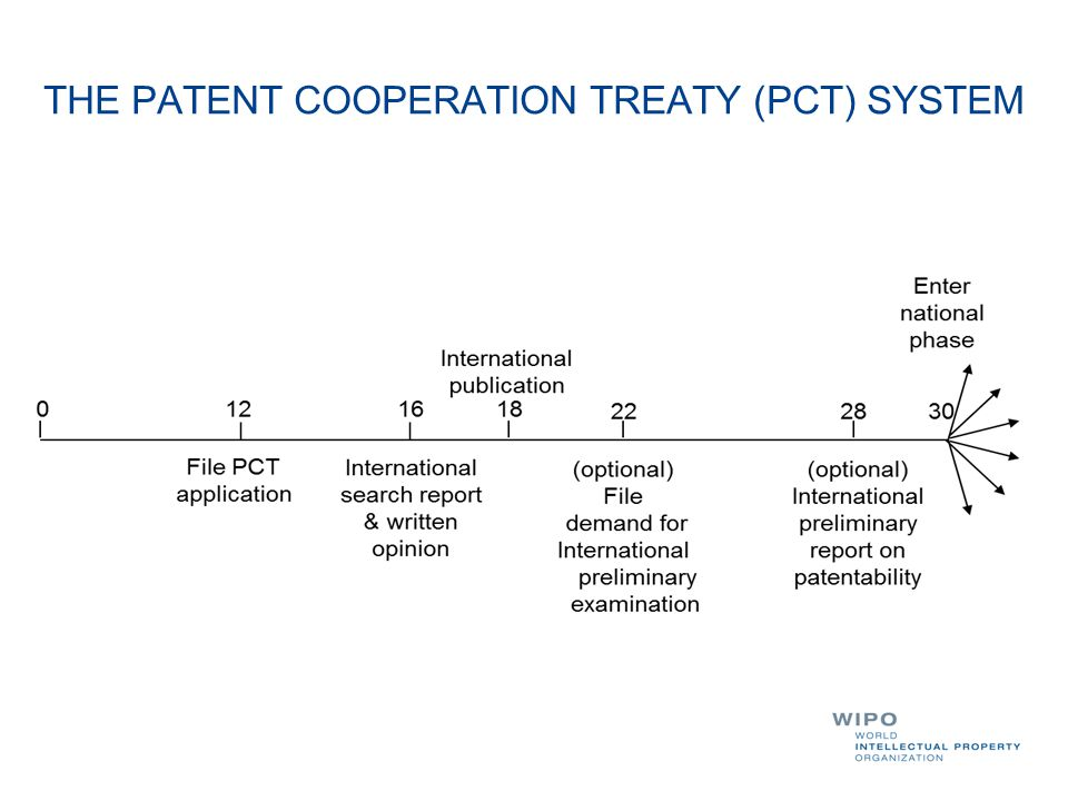 THE PATENT COOPERATION TREATY (PCT) SYSTEM
