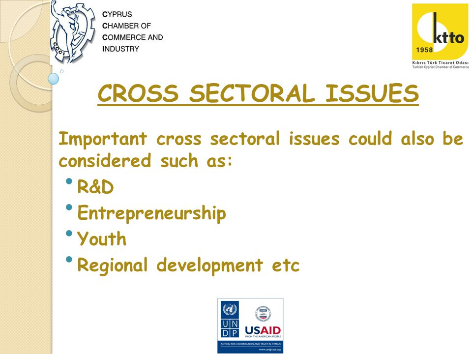 CROSS SECTORAL ISSUES R&D Entrepreneurship Youth Regional development etc Important cross sectoral issues could also be considered such as: