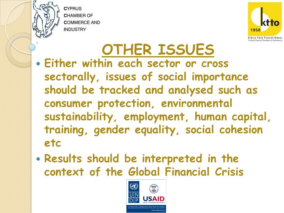 Either within each sector or cross sectorally, issues of social importance should be tracked and analysed such as consumer protection, environmental sustainability, employment, human capital, training, gender equality, social cohesion etc Results should be interpreted in the context of the Global Financial Crisis OTHER ISSUES